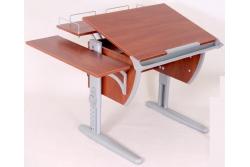 Парта трансформер ДЭМИ (СУТ.14-02) (серый,яблоко) стул деревянный.